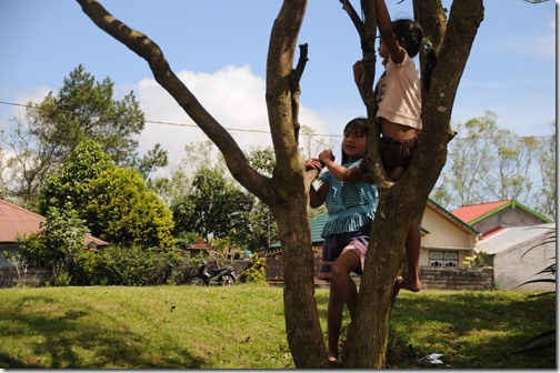 Balinese children playing in trees