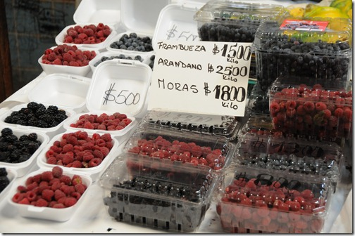 Berries for sale in the Patronato market, Santiago, Chile