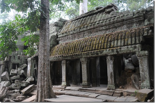 Ta Prohm (Tomb Raider) Temple, Angkor region, Cambodia