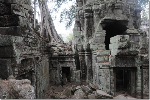 Ficus Trees growing from the Ta Prohm (Tomb Raider) Temple, Angkor region, Cambodia