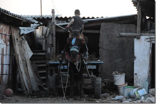 Horse and cart in Šuto Orizari (Шуто Оризари,) FYRO Macedonia - The largest Romani (Gypsy) Community in the world