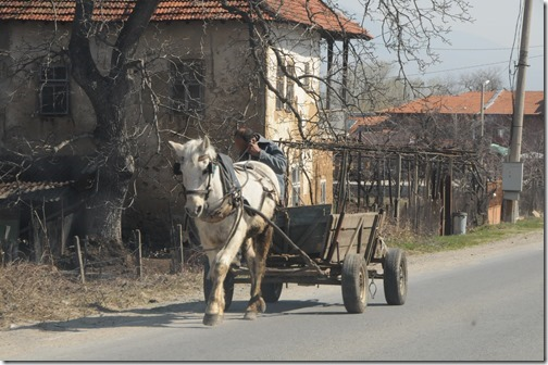 Bulgarian horse and cart on the drive from the Macedonian border to Sofia, Bulgaria