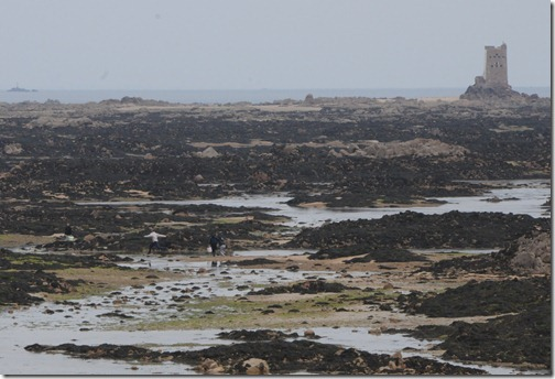 People heading out to Seymour Tower at low tide in Jersey, Channel Islands (Jèrri, Îles d'la Manche)