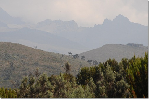 Changing vegetation and distant peaks on the hike from Mandara Huts to Horombo Huts, Mt. Kilimanjaro, Tanzania
