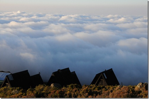 Above the clouds at Horombo Huts, Mt. Kilimanjaro, Tanzania