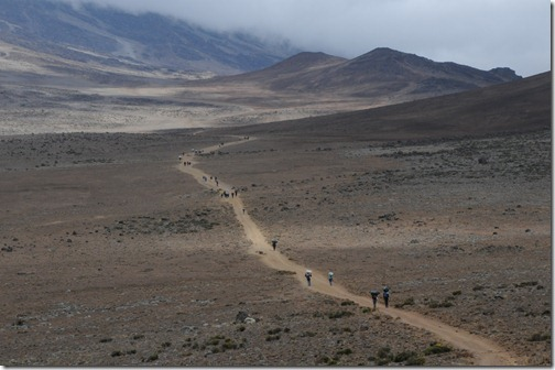 Hiking the Saddle between Kibo and Mawenzi Peaks on Mount Kilimanjaro