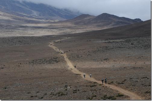 Hiking the Saddle between Kibo and Mawenzi Peaks on Mount Kilimanjaro