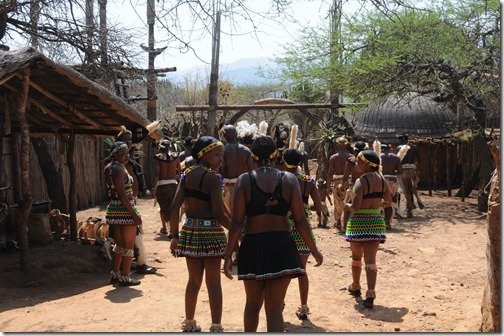 Zulu dancers leaving the main lodge after an amazing performance in Shakaland, South Africa