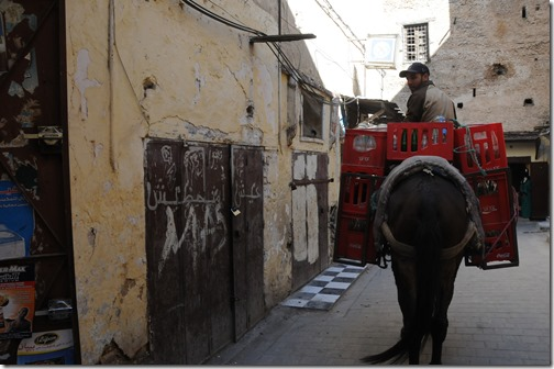 Coca-Cola delivery mule in Fes, Morocco