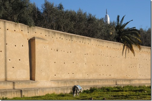Wall around the Mellah (Old Jewish Quarter) in Fes, Morocco